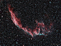NGC 6995, Eastern part of Veil.